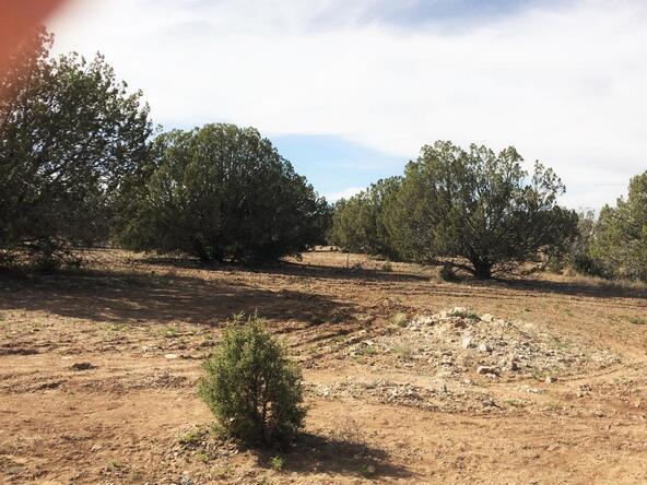 1870 W. Escondido Trail, Paulden, AZ 86334 Photo 23