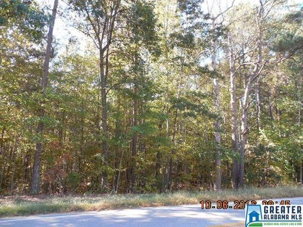 17226 Hwy. 78, Fruithurst, AL 36262 Photo 35