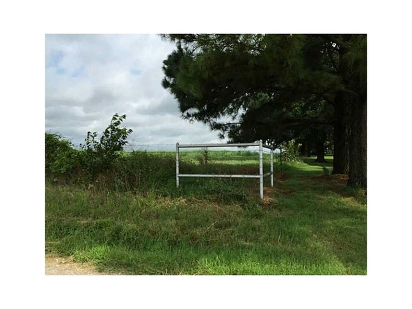 24491 Smith Rd., Summers, AR 72769 Photo 10