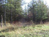Home for sale: Lot D Tbd, Park Rapids, MN 56470