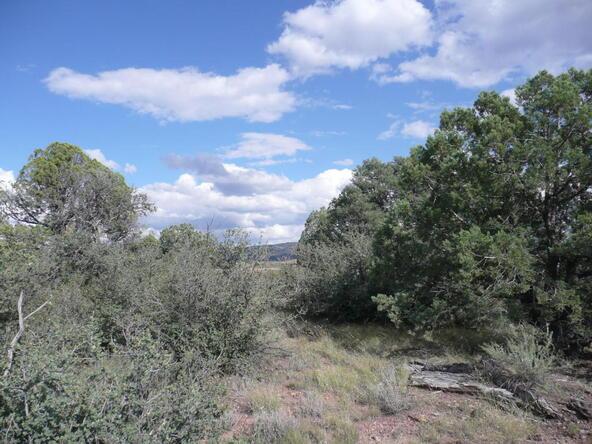 290 N. Navajo Trail, Young, AZ 85554 Photo 8