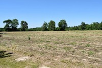 Home for sale: 54 +/- Ac Frank Murphy Ln., Lucedale, MS 39452