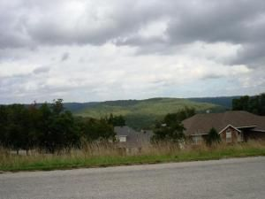 Lot 50 L 50 Whitetail Dr., Walnut Shade, MO 65771 Photo 2