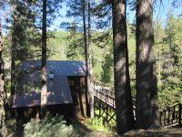 Home for sale: 211 Edna Dr., Sierra City, CA 96125