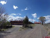 Home for sale: 4340 Us Hwy. 160 West Hwy., Monte Vista, CO 81144