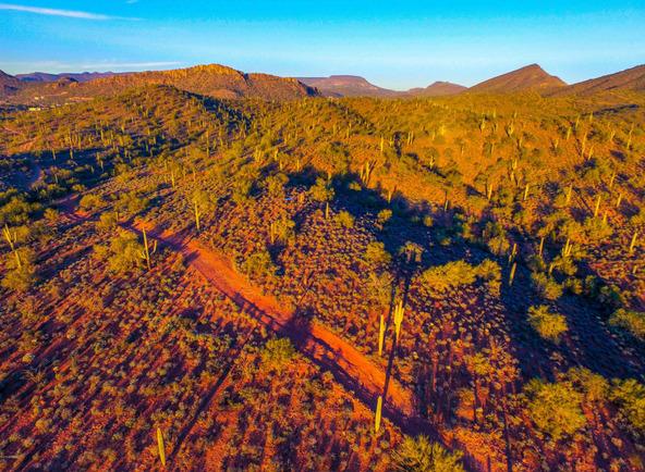 41000 N. 7th St., Phoenix, AZ 85086 Photo 13