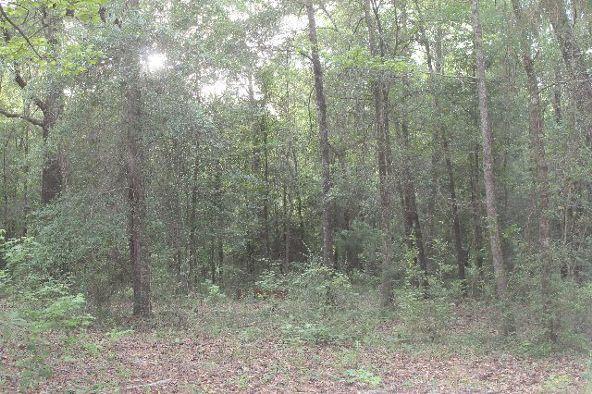 30191 Hollinger Creek Dr., Robertsdale, AL 36567 Photo 17