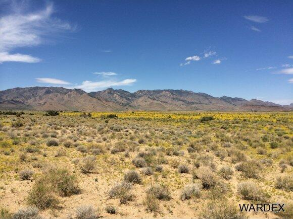 33236005 Land, Kingman, AZ 86409 Photo 6