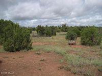 Home for sale: 4850 Sawmill Rd., Clay Springs, AZ 85923