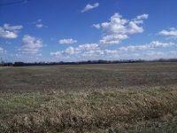 Home for sale: 794 North Division St., Braidwood, IL 60408