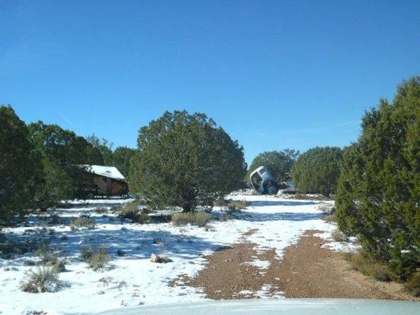 459 Hardrock Rd., Seligman, AZ 86337 Photo 41
