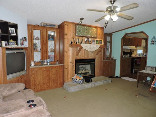 102 Wpa Rd., Alpena, AR 72611 Photo 37