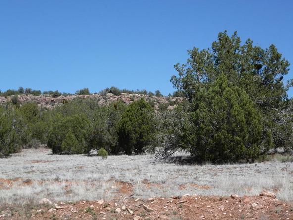 42100 N. Dead Tree Rd., Seligman, AZ 86337 Photo 21