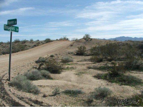 16775 S. Douglas Ln., Yucca, AZ 86438 Photo 1