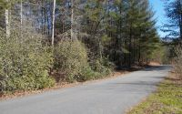 Home for sale: Lot 9 Moore Hill, Hayesville, NC 28904