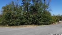Home for sale: 130 Thunderbird Dr., Harvest, AL 35749