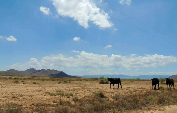 320 Ac On Sulphur Springs, Willcox, AZ 85643 Photo 3