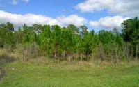 Home for sale: 7218 Burkett Ave., Sebring, FL 33875