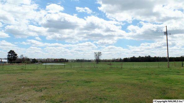 547 County Rd. 550, Grove Oak, AL 35975 Photo 2