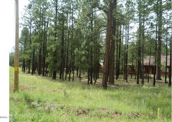 7828 Buck Springs Rd., Pinetop, AZ 85935 Photo 9