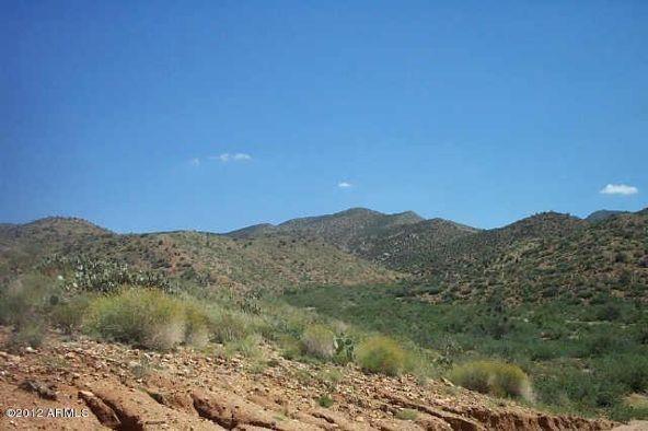 160 S. Eagle Springs Rd., Wikieup, AZ 85360 Photo 3