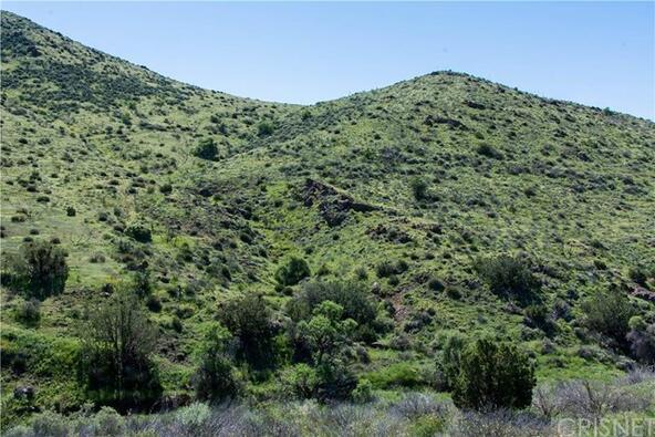 15 Vac/Vic Deerglen Ln./1/4 Mi S. E., Agua Dulce, CA 91350 Photo 29