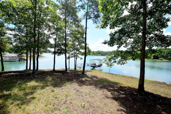 75,76,77 Stoney Pointe Landing, Double Springs, AL 35553 Photo 3