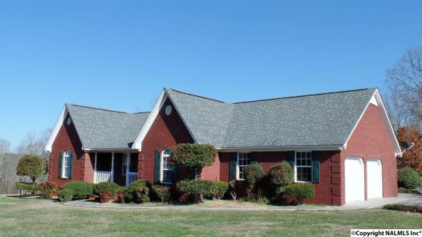 278 County Rd. 557, Grove Oak, AL 35975 Photo 16