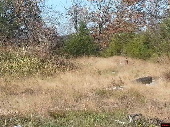 550 Mc 2031, Lead Hill, AR 72644 Photo 1