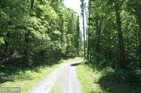 Home for sale: 3619 Dry Run Rd., Luray, VA 22835