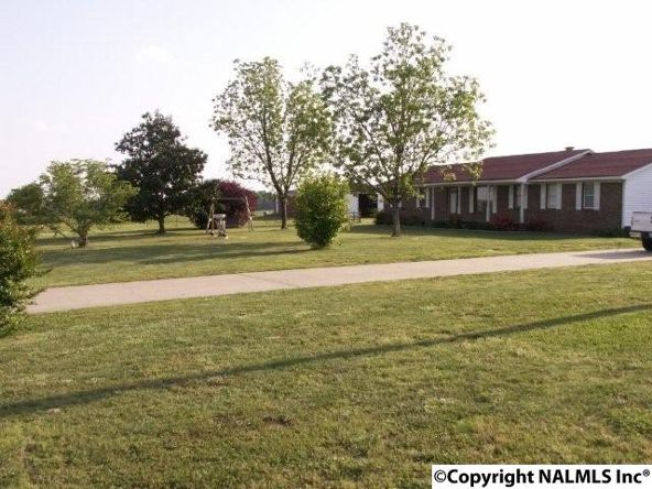 3372 County Rd. 52, Rogersville, AL 35652 Photo 2