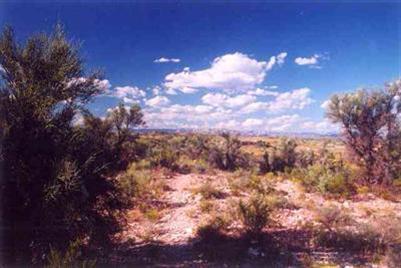 2450 S. Tissaw Rd., Cornville, AZ 86325 Photo 2