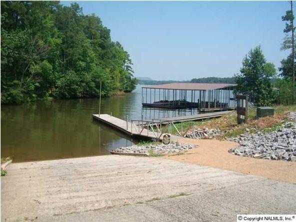 166 Lookout Mountain Dr., Scottsboro, AL 35769 Photo 8