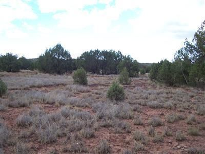 1805 W. Cumberland Parcel J Rd., Ash Fork, AZ 86320 Photo 18