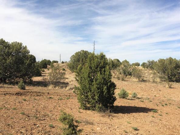 1870 W. Escondido Trail, Paulden, AZ 86334 Photo 25