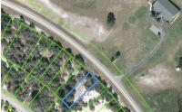 Home for sale: 775 Cr 29, Lake Placid, FL 33852