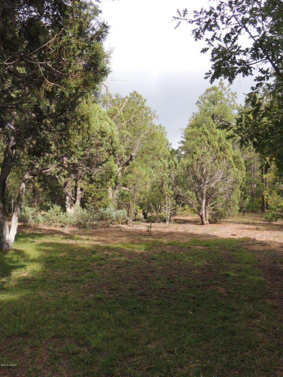 1911 S. Sierra Park Trail, Show Low, AZ 85901 Photo 32