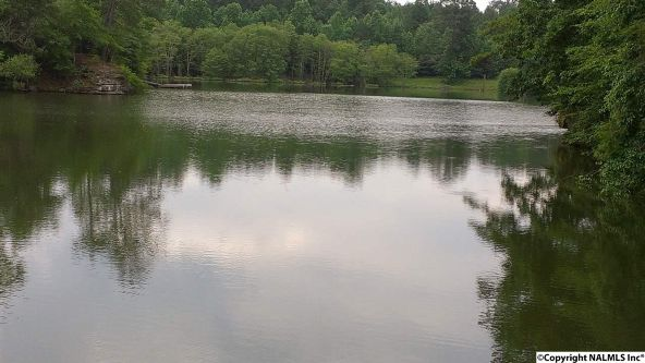 133 Cane Creek Overlook, Double Springs, AL 35553 Photo 26