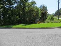 Home for sale: Co Rd. 36, Pelham, AL 35124