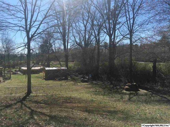 439 Elkwood Section Rd., Hazel Green, AL 35750 Photo 19