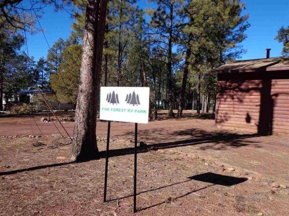 3530 Petes Retreat, Lakeside, AZ 85929 Photo 11