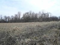 Home for sale: Lot 409 92nd Avenue, Milan, IL 61264