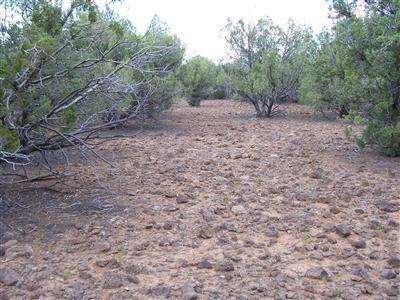 511 Martinez - Wwr Lot 511, Seligman, AZ 86337 Photo 23