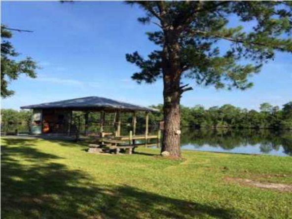 14383 Riverside Dr., Magnolia Springs, AL 36555 Photo 3