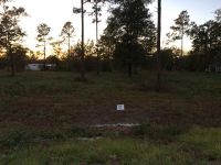 Home for sale: Lot 37 Jamie's. Way, Jesup, GA 31545