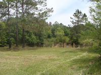Home for sale: 24+Acres Ga. Hwy. 111, Moultrie, GA 31768