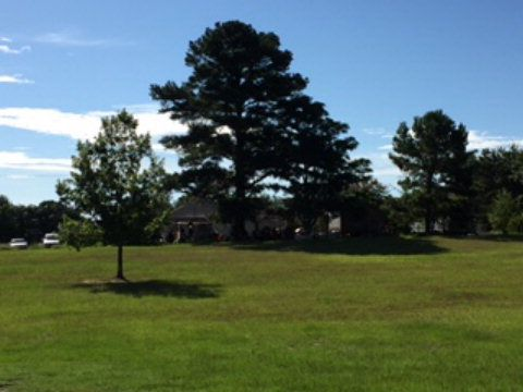 234 Salem Church Rd., Tifton, GA 31794 Photo 4