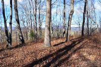 Home for sale: 0 Fox Haven Ln., Sparta, NC 28675