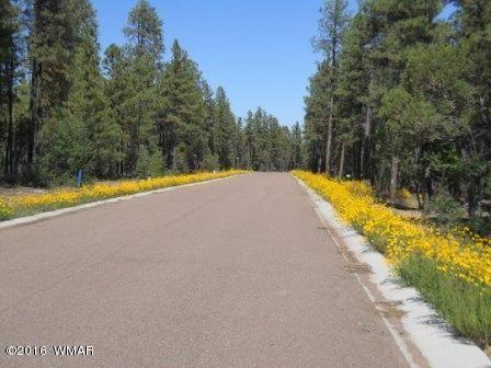 2329 S. Willow Way, Pinetop, AZ 85935 Photo 3