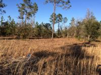 Home for sale: Lot 12 Rick's. Pl., Jesup, GA 31545